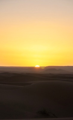 During sunrise